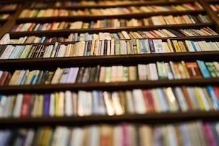 Los libros mentirosos